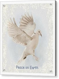 Acrylic Print featuring the photograph Peace On Earth by Diane Alexander