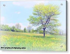 Peace On The Hillside Acrylic Print