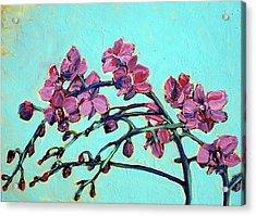 Peace Orchids Acrylic Print by Sheila Tajima