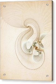 Peace Acrylic Print by Talasan Nicholson