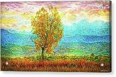 Peace Tree Sunset Acrylic Print