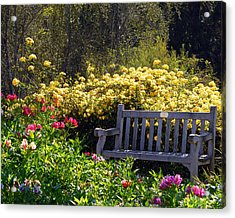 Peaceful Acrylic Print by Amy Fose