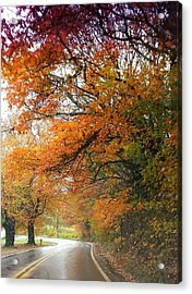 Peaceful Autumn Road Acrylic Print