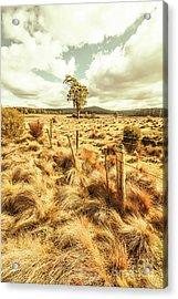 Peaceful Country Plains Acrylic Print