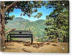 Peaceful Encounter Acrylic Print