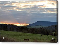 Peaceful Evening Acrylic Print by Jan Amiss Photography