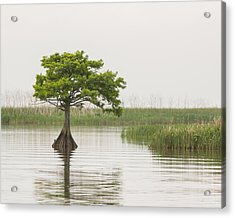 Acrylic Print featuring the photograph Peaceful Feeling by Julie Andel