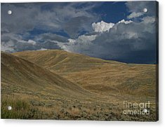 Peaceful Intensity Acrylic Print by Katie LaSalle-Lowery