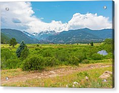 Peaceful Meadow Acrylic Print