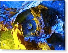 Peaceful Nest  Acrylic Print by Rohan Sandhir