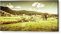 Peaceful Panoramic Pasture Acrylic Print