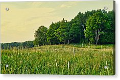 Peaceful Pastures Acrylic Print