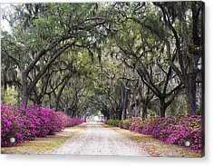 Peaceful Resting Place Acrylic Print