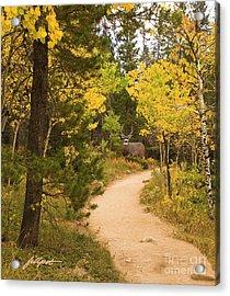 Peaceful Walk Acrylic Print