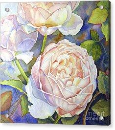 Peach Roses Acrylic Print