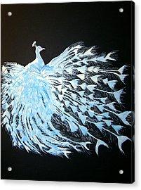 Peacock 1 Acrylic Print by Chris Benice