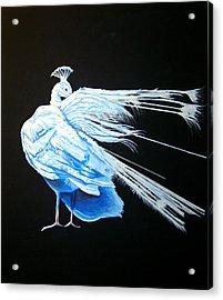 Peacock 2 Acrylic Print by Chris Benice