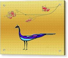 Peacock Acrylic Print by Asok Mukhopadhyay