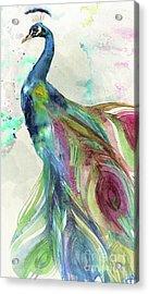 Peacock Dress Acrylic Print