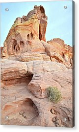Acrylic Print featuring the photograph Peak Of Color In Valley Of Fire by Ray Mathis