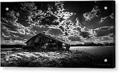 Peanuts This Year Acrylic Print by Marvin Spates