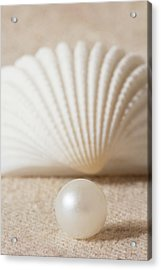 Pearl And Shell Acrylic Print