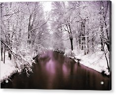 Pearlescent Acrylic Print by Jessica Jenney