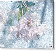 Pearlesque Floral Acrylic Print
