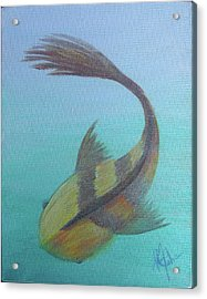 Pearly Fishy Acrylic Print