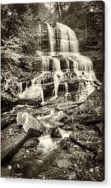 Pearsons Falls Acrylic Print by Joye Ardyn Durham