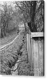 Peasant Man On A Muddy Road Acrylic Print by Gabriela Insuratelu