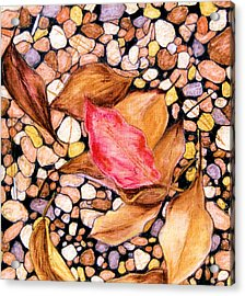 Pebbles And Leaves Acrylic Print by Jan Amiss