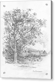 Pecan Tree Acrylic Print