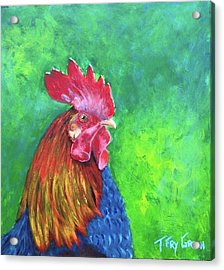 Morning Rooster Acrylic Print by T Fry-Green