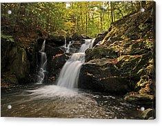 Pecks Falls Acrylic Print by Mike Martin
