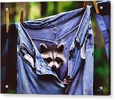 Acrylic Print featuring the photograph Peek A Boo by Kathy Tarochione