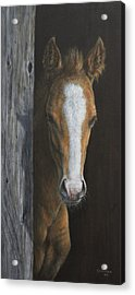 Acrylic Print featuring the painting Peek A Boo by Kim Lockman