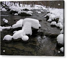 Peekamoose Winter Acrylic Print by William A Lopez