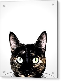 Peeking Cat Acrylic Print by Nicklas Gustafsson