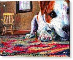 Peeking Piper Acrylic Print by Melissa J Szymanski