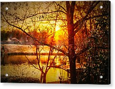 Peeking Through - Lake Sunrise Acrylic Print by Barry Jones