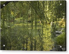 Peeking Through The Willows Acrylic Print by Linda Geiger