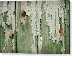 Acrylic Print featuring the photograph Peeling 3 by Mike Eingle