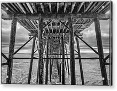 Acrylic Print featuring the photograph Peering From Below by Wade Courtney