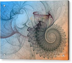 Pefect Spiral Acrylic Print