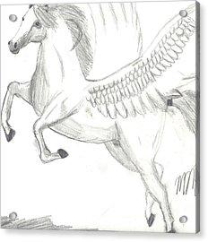 Pegasus Acrylic Print by Maddi Pollihan