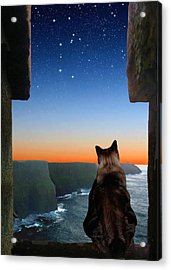 Pegasus Over The Cliffs Of Moher Acrylic Print by Kathleen Horner