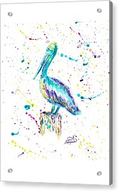 Pelican By Jan Marvin Acrylic Print