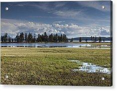 Pelican Creek Acrylic Print