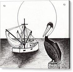 Pelican Fishing Paradise C1 Acrylic Print